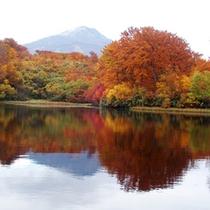 *【鳥海山・紅葉】湖面に映る紅葉も、また風情があります。