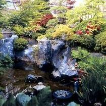 四季折々の草花が楽しめるお庭の池