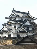凛とたたずむ彦根城