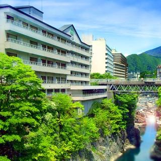 鬼怒川温泉 湯けむりまごころの宿 一心舘施設全景