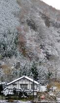 湯西川温泉 民宿やま久 囲炉裏の温泉民宿施設全景