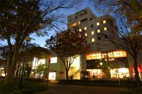 諏訪シティホテル成田屋施設全景