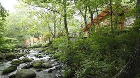 「蔵王の森」がつくる美と健康の温泉宿 ゆと森倶楽部