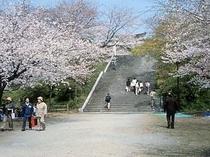 西公園・桜がきれい♪徒歩7分