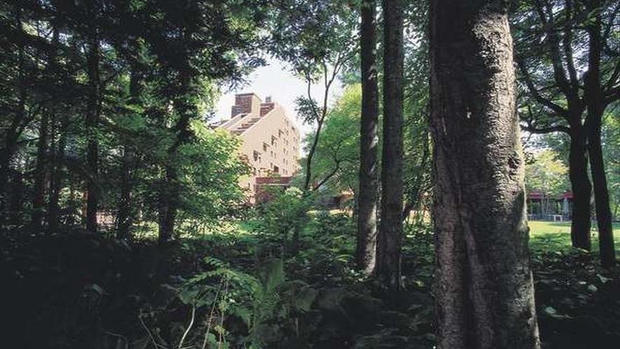 ■中庭の自然林の中からみたホテルの外観