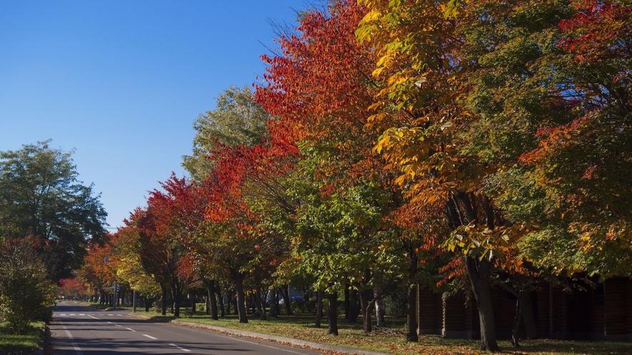 ■ホテル周辺の紅葉