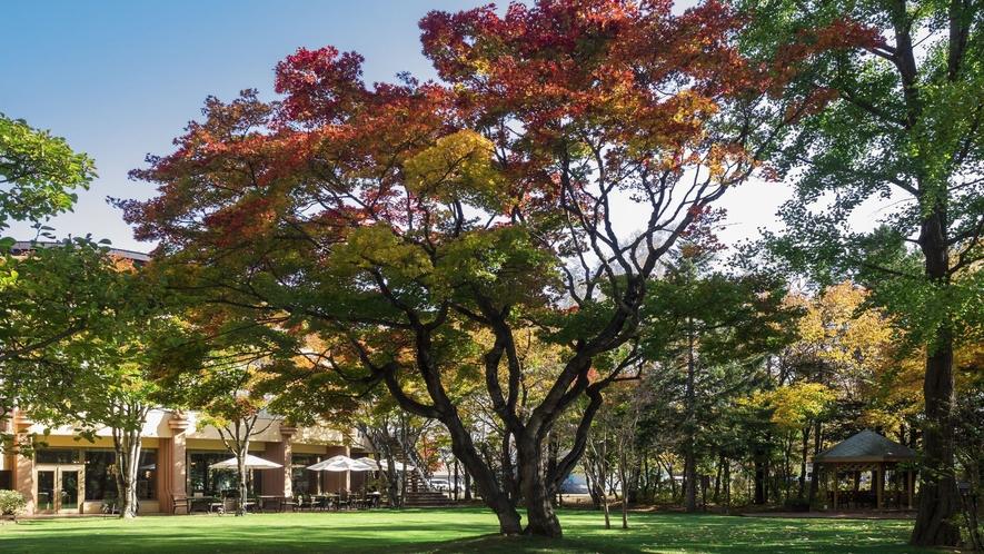 ■ホテル中庭の紅葉