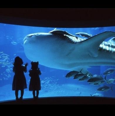 世界最大級の水族館へ行こう!海遊館入館券付<朝食付>