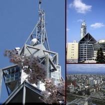 □富山市役所展望台