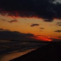 目の前の海岸(遊歩道)