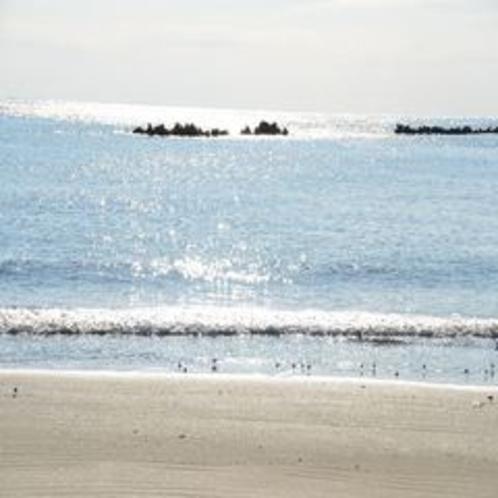 前に広がる海岸
