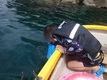 あさひやボートの上から水中を箱めがねでウォッチング♪