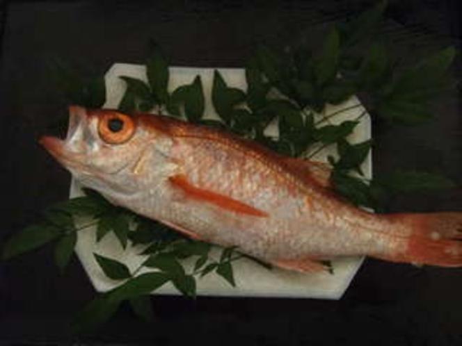 1. 幻の魚!!のどぐろを照り焼きで!!(別注料理)