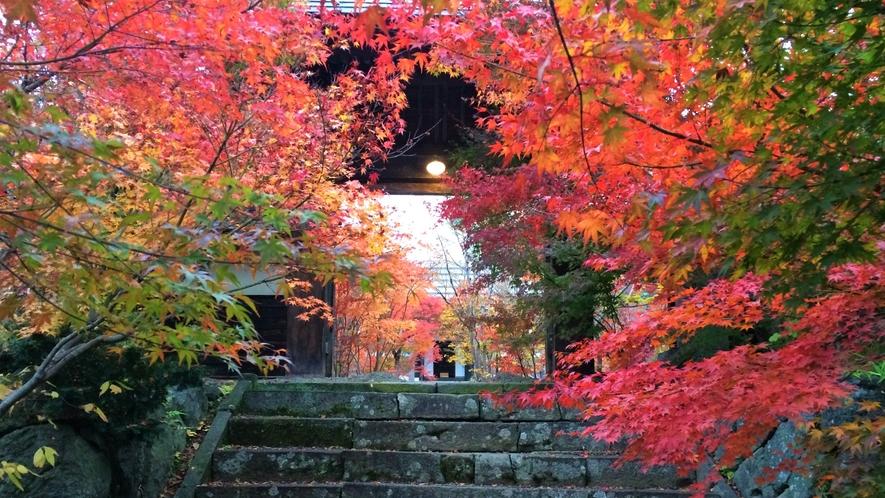 紅葉の称念寺