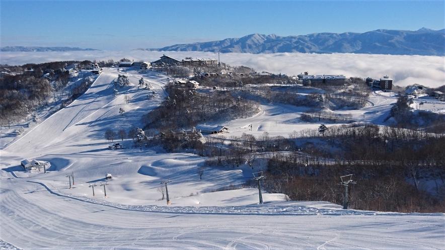 上質パウダーの斑尾高原スキー場