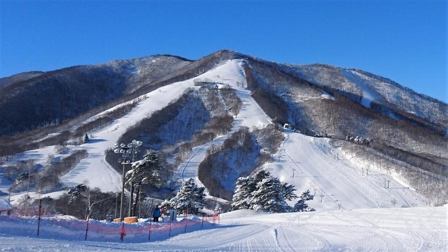 斑尾高原スキー場まで徒歩2分