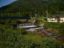 夏の新緑と川