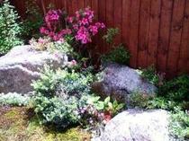 5月には季節の花、さつき、つつじ、夏にはアジサイが見ごろですね