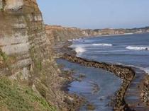 断崖が続く屏風ヶ浦の風景