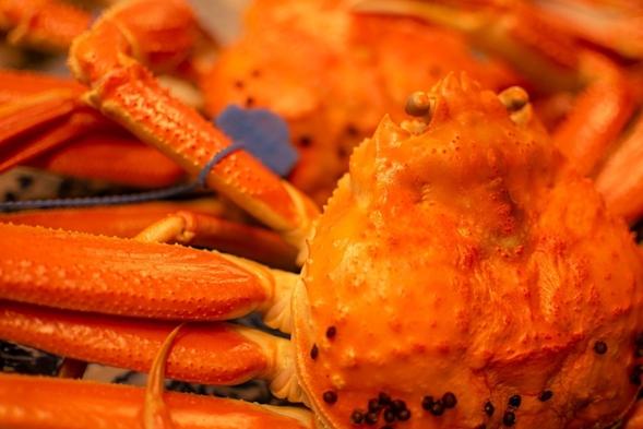 【冬】《タグ付き蟹をお一人様1杯使用》少量希望の方おすすめ◆調理方法はお好みで◆〜地蟹味わいプラン〜