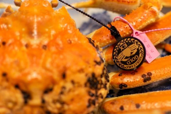 【冬】最高級幻の活蟹《1.4kg以上の柴山ゴールド蟹をひとり1杯使用》◆調理方法はお好みで◆