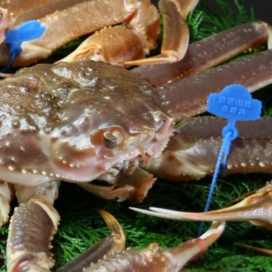 【冬】最高ランクの活蟹《1匹1㎏以上の活松蟹を二人で3杯使用》◆調理方法はお好みで◆〜番蟹プラン〜