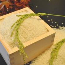 丹後清流米