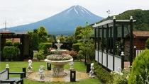ペイネガーデンから望む富士山