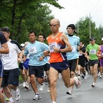 キャベツマラソン