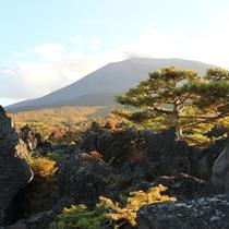 *【周辺/鬼押し出し園】見上げれば浅間山がすぐ近くに見える大迫力の公園です。
