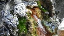*温泉  お湯は加水なしの熱め(46℃)のアルカリ性炭酸泉です
