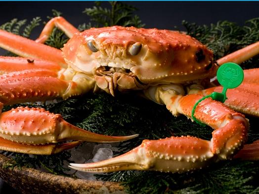 【冬の最上級】★お1人様2匹★ブランド松葉蟹〜間人ガニコース「極み」〜〈茹でガニ付〉