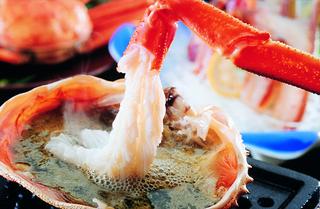 【昼食プラン】はしうど蟹ベーシックコース【お一人様一匹】《約700g》ブランド松葉蟹