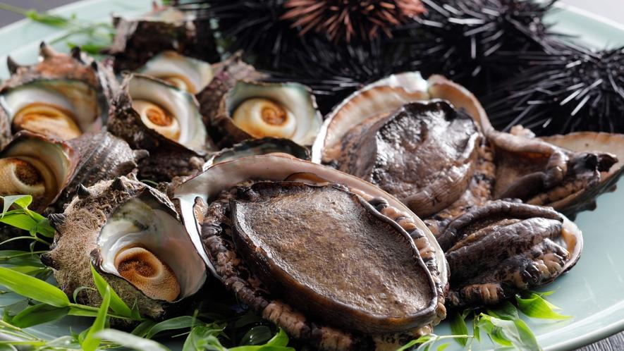 【食材】アワビや黒雲丹、サザエなどの豪華地物食材