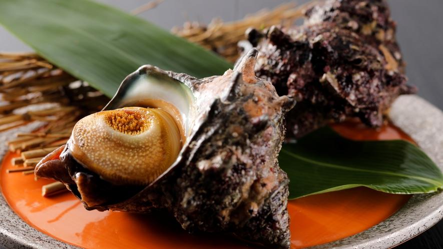 【食材】磯の香りを感じながら味わうサザエ!