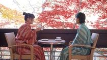 【絹-KINU-】テラスからは季節の移ろいをご覧いただけます。