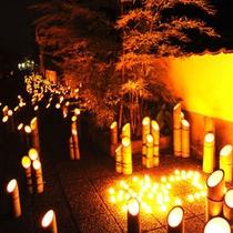城下町が2万本の竹灯籠で彩られる【たけた竹灯籠・竹楽