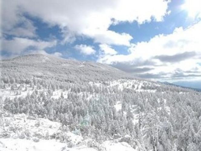 雪化粧の蓼科高原
