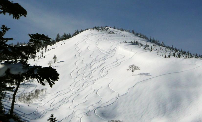 かぐらスキー場 バックカントリー