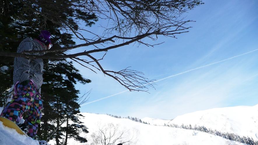 詳細情報用 かぐらスキー場