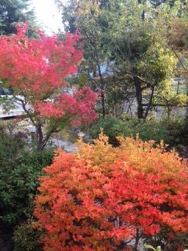 紅葉の景色3