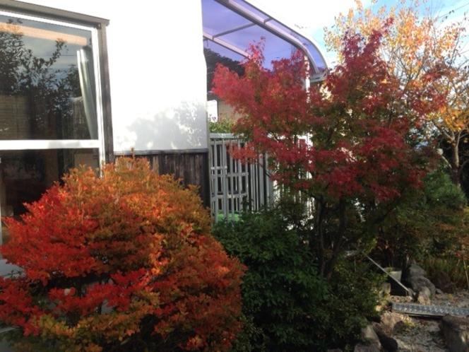 紅葉の景色2