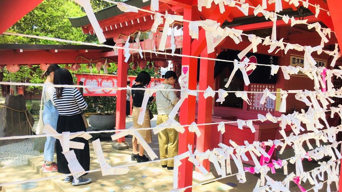 【周辺】恋木神社