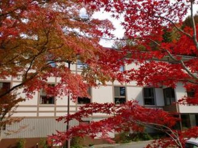 紅葉に包まれるやまびこ荘