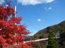 上野スカイブリッジと紅葉