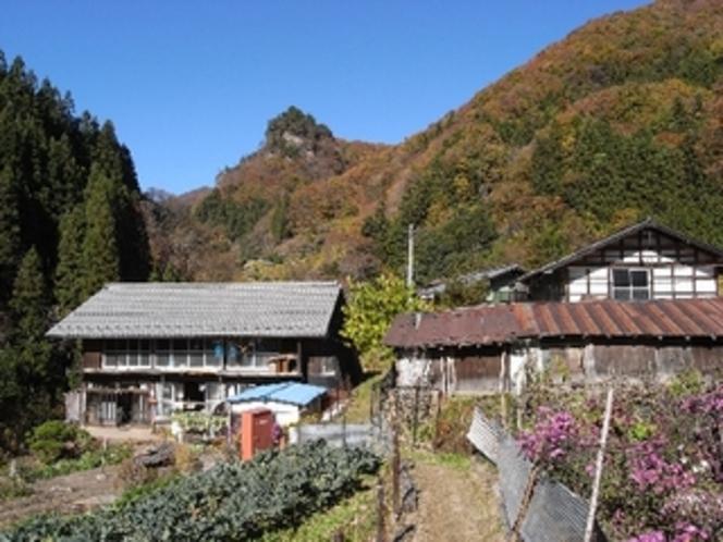 秋の住居付