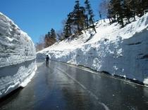 春山バスに乗って雪壁を見に行こう♪