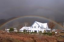 ウィークエンドシャッフルと虹