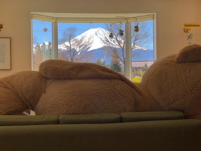 クマも一休み
