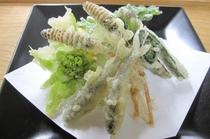 【春料理】【山菜天麩羅】